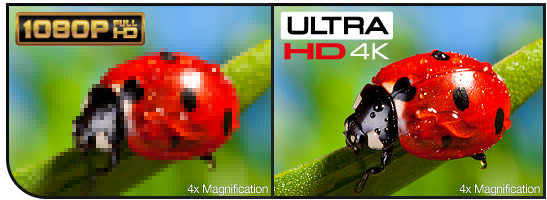 4x the Resolution and Detail vs. 1080p Full HD